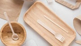 Test sur la vaisselle jetable : le « sans plastique » n'est pas si vert, ni sans danger pour la santé
